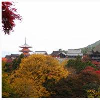 京都 2016 秋 3