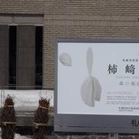 ■札幌美術展 柿崎熙―森の奥底 (2017年1月28日~3月26日)