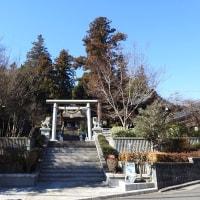 中氷川神社(所沢市山口)