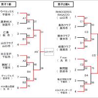 [大会結果]平成28年度山口県体育大会(一般の部)