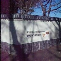 駿府城本丸現説