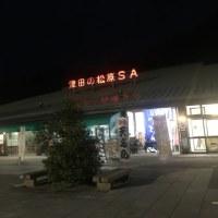 津田の松原へ行ってました!