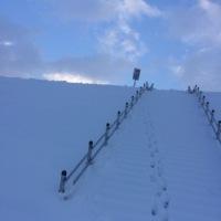 ミラーネイルにきらめく雪