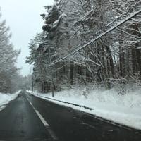 At april snow⁉︎  季節は春ですが・