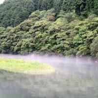 6月29日の散歩 雨上がり