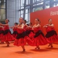 Hawai'i Newyear Festival