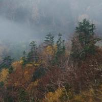 霧の撮影旅行