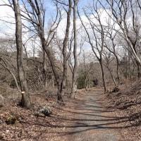 春を待つ丸火自然公園