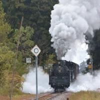 チョット前の撮影から、11月9日撮影 飯山線 SL試運転より その5 土市駅にて大爆煙