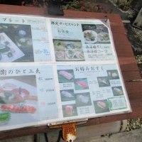 のんびりと、まんぷく広島グルメ『さかもと屋 市兵衛』で集ランチ