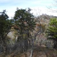 鹿納山その2