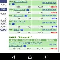 こうちゃんの体型。11/24の株の結果