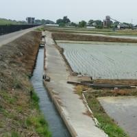 利根川と田植え