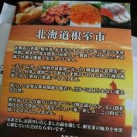 【ふるさと納税】北海道根室市のお刺身サーモン