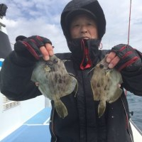 24日カワハギ釣果