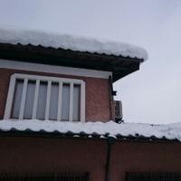 雪の重みで