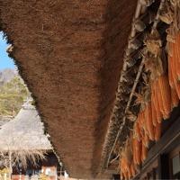 茅葺きの里で富士山