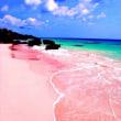 カリブ海行きたい