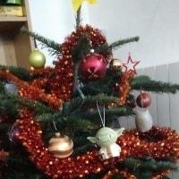 クリスマス準備開始