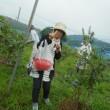 今年もお友達とブルーベリー狩り! プールのお友達とご一緒に~長野富士見町