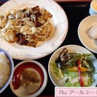 札幌 チャイニーズシロクマ