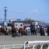 冬の蝦夷旅  最終日