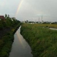 雨上がりの夕暮れ時 虹が出ました