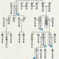 PROM.44 天皇「生前退位」→譲位に関する基礎知識