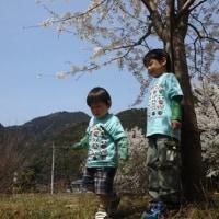 コブログ2012.04.11