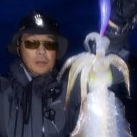 10月17日ボートエギングの釣果