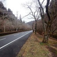 武芸川権現山