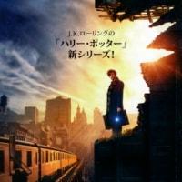 映画 IMAX3D「ファンタスティック・ビーストと魔法使いの旅」