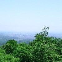 遠足(高尾山)