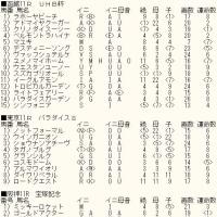 「宝塚記念」&WIN5対象レースのカバラ暗示付き出馬表&強運モーニング馬