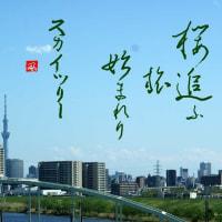 みちのく櫻紀行(東北さくら絵巻)一:櫻追ふ旅始まれりスカイツリー