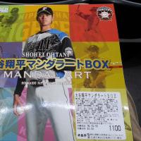 大谷翔平マンダラートBOX(弁当)、発売中!