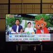 SANSUI・50インチTV
