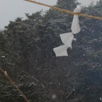 大雪&どんど焼き