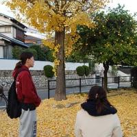 気持ちの良い日 11月25日(金)晴れ