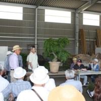宗像市玄海盆栽同好会の盆栽交換会に行ってきました。