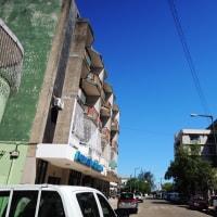 モザンビークの「フランゴ・ザンベジアーナ」