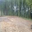竹山の清掃後の状態です