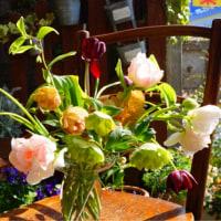 花あそび 4月