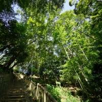 滝の城址(所沢市滝の城址公園)