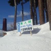 170204 松之山・美人林スノーシュー歩き