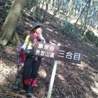 藤原岳 170318