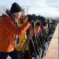 音羽橋の カメラマン