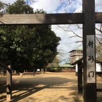生田緑地でトレッキング