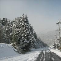 朝から、大雪となりました。