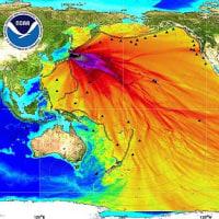 放射能汚染、ロシアの動き